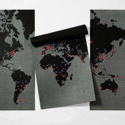 Décoration murale - PinWorld Maps - World map diary - PALOMAR
