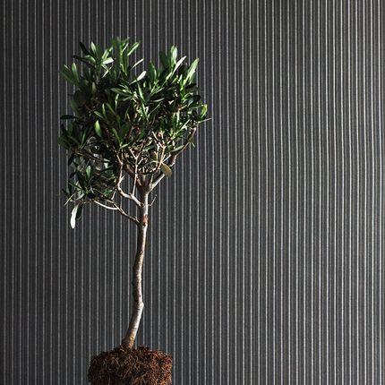 Outdoor fabrics - FORSIZIA - IRISUN BY GIOVANARDI