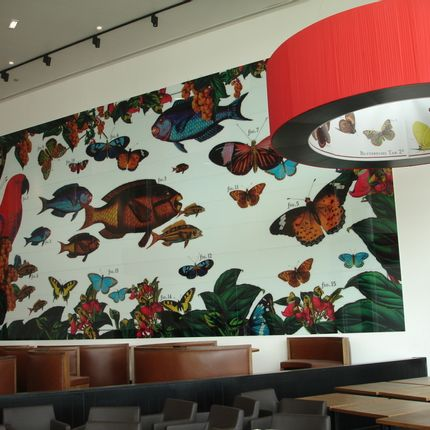 Wall coverings - Laminated Glass with digital printing of high resolution  - WIDINGLASS by Biselarte