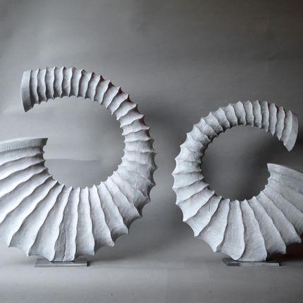 Sculpture - Sculptures - fossile shells - BENOIT AVERLY