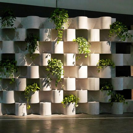 Green walls - Green Wall - MARMI FAEDO