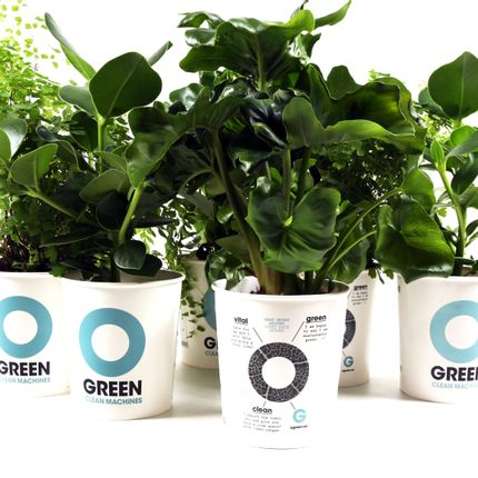 Floral decoration - Ogreen Clean Machines - RESCUED! FROM WASTE TO WONDERFUL