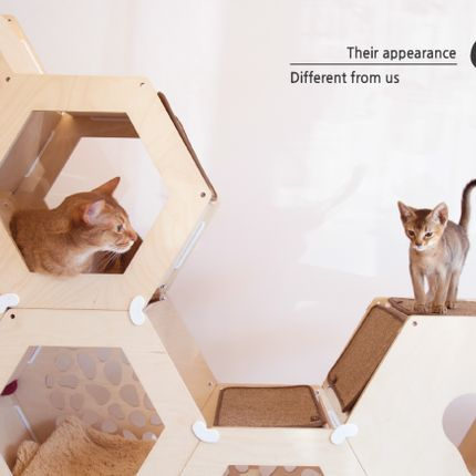 Shelves - mondomiopet cat-tower - KIUM DESIGN IN KYUNGIL UNIV.