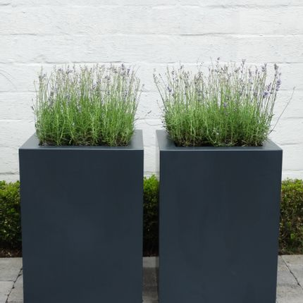 Flower pots - planter - RITA JORDENS
