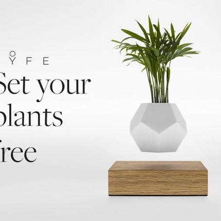 Design objects - LYFE Levitating Planter - FLYTE