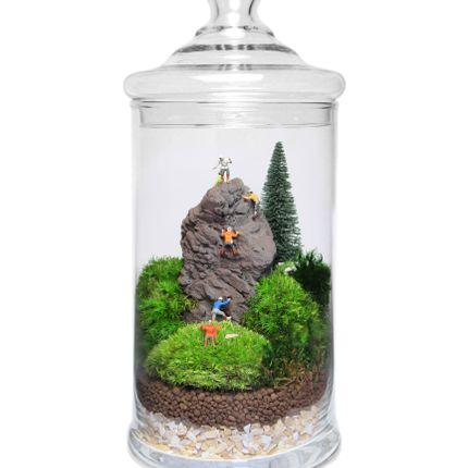 Decorative objects - TerrariumArt - TERRARIUMART