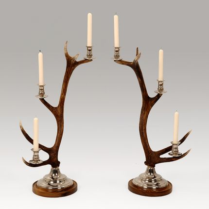 Decorative objects - ANTLER CANDLESTICKS - CLOCK HOUSE FURNITURE