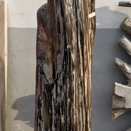 Design objects - petrified wood sculpture - WILD-HERITAGE.COM