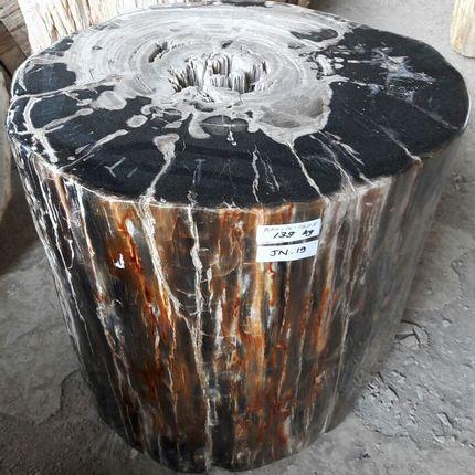 Sinks - Petrified wood  - WILD-HERITAGE.COM