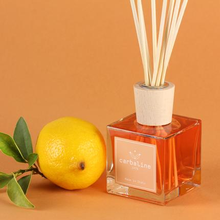 Diffuseurs de parfums - Home Fragrance - Cube - CARBALINE