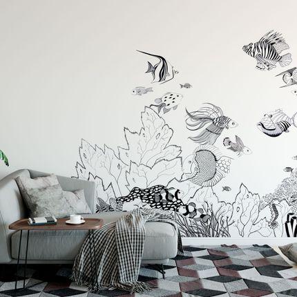Wallpaper - Strani Pesci - AL&GORIA