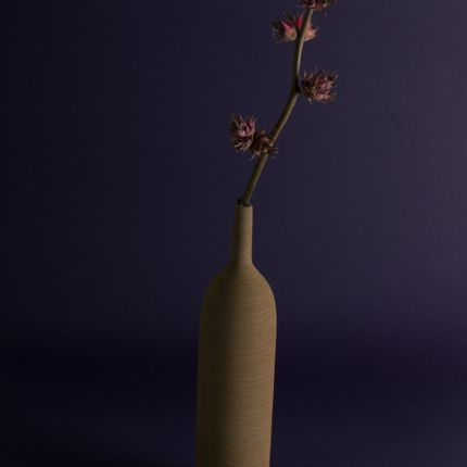 Vases - TANGA Ceramic Bottle Vase. - ASIATIDES
