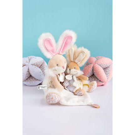 Toys - collection LAPIN DE SUCRE  - DOUDOU ET COMPAGNIE - HISTOIRE D'OURS