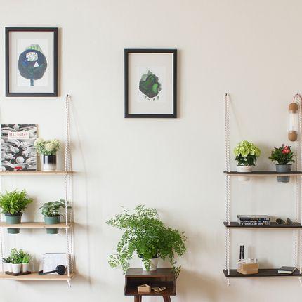 Shelves - Snuro Shelves - DEDAL