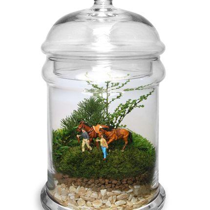 Gift - TerrariumArt glass 3010 - TERRARIUMART