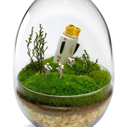 Design objects - TerrariumArt glass 3001 - TERRARIUMART