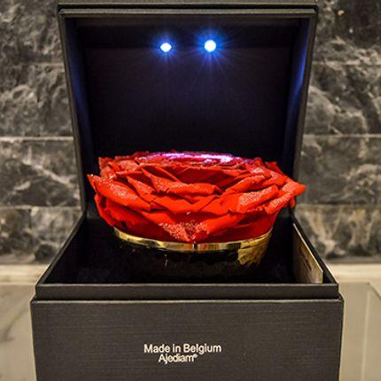 Gift - Red Diamond Rose - VIVA FLORA