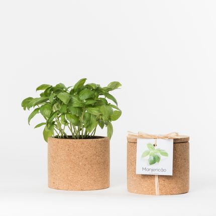 Objets connectés - Grow Cork - LIFE IN A BAG