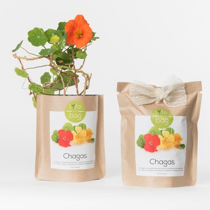 Objets connectés - Grow Bag - LIFE IN A BAG