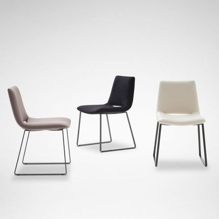 Chairs - WALTZ PLUS - CAMERICH