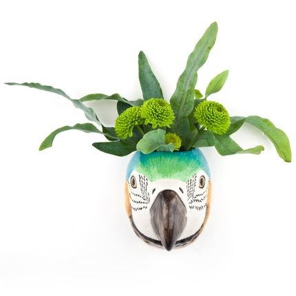 Vases - Macaw wall vase - QUAIL DESIGNS