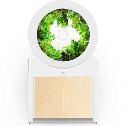 Mini cuisines - Ogarden Smart - le potager d'intérieur 90 plantes - SMARTGARDEN360 - OGARDEN POTAGER D'INTÉRIEUR 90 PLANTES