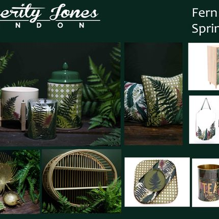 Gift - Gammes Fougeres + Floral Mexicain - TEMERITY JONES