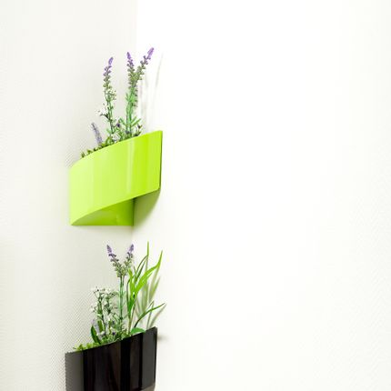 Wall decoration - Modul'Green Gift, Wall Container  - GREEN'TURN