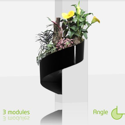 Wall decoration - Modul'Green, gift - GREEN'TURN