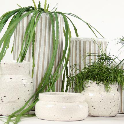 Floral decoration - Flowerpot indoor  - QUETZALES