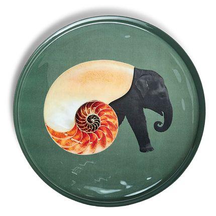Decorative objects - Curiosito trays - GANGZAÏ
