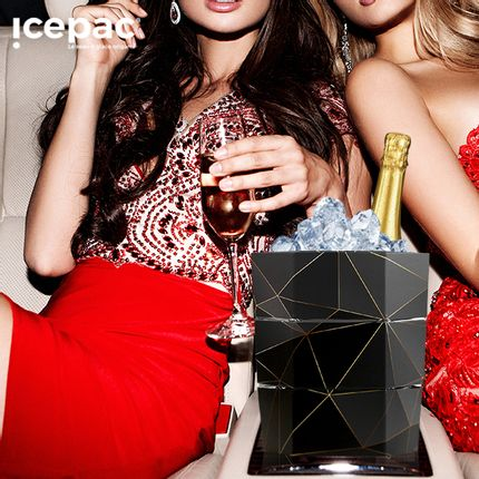 Gift - ORIGAMIC Ice Bucket and Soft Vase - ICEPAC FLOWERPAC
