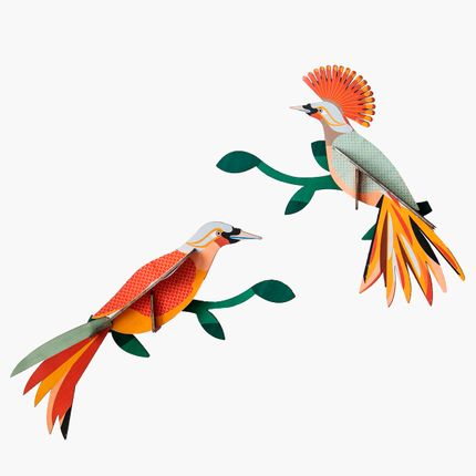 Wall decoration - Paradise Bird, Obi - STUDIO ROOF