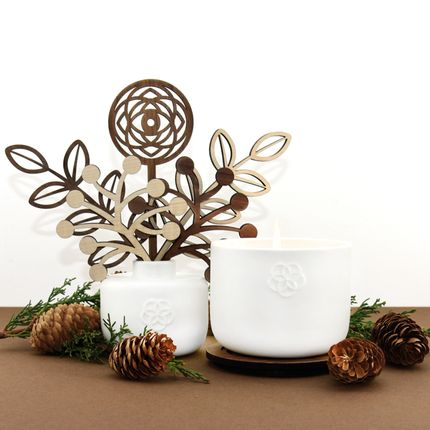 Scent diffusers -  FRAGRANCE DIFFUSER - LEBANESE CEDRA - VISION - LUMINOSENS