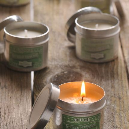 Candles - Plant candle - ATELIER DU SAVON , TRAVAIL À FAÇON
