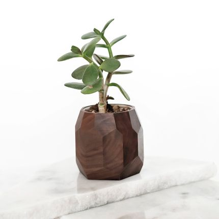 Decorative objects - Walnut geometric pot - OAKYWOOD