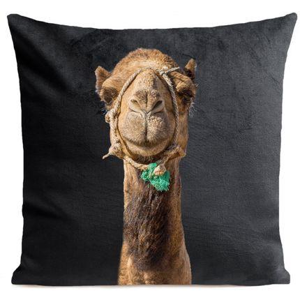Cushions - Smiling CAMEL Cushion 40*40 - ARTPILO