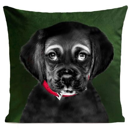 Cushions - BILLY JOE Cushions 40*40 - ARTPILO
