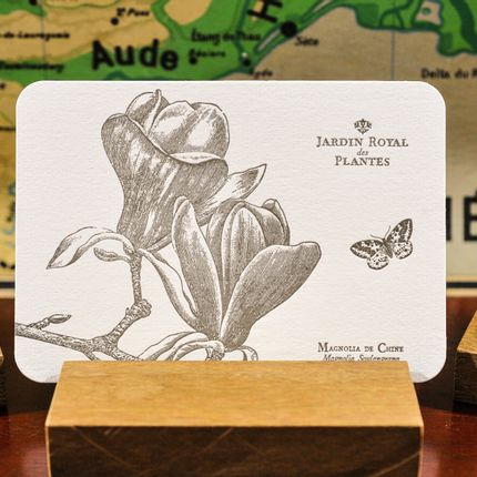Stationery / Card shop / Writing - Card Magnolia of China - L'ATELIER LETTERPRESS