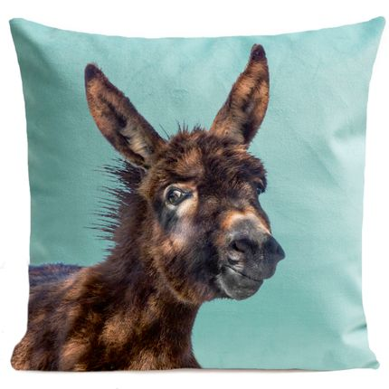 Coussins - BABY DONKEY Coussin 40*40 - ARTPILO