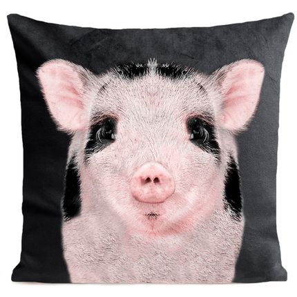 Coussins - BABY PIG Coussin 40*40 - ARTPILO