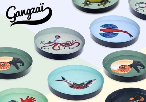 GANGZAI DESIGN - Collection Curiosito