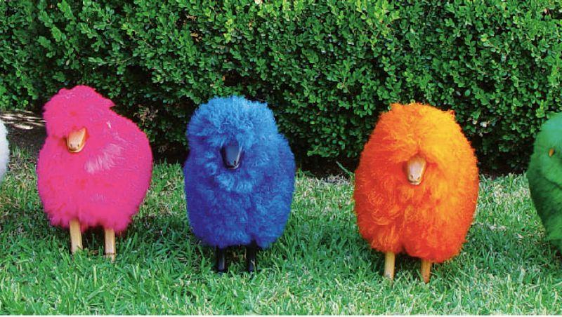 TULINE - colored sheep