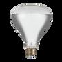 Ampoules pour éclairage intérieur - Vintage Infrared 250W E27 240V Heat Bulb - INDUSTVILLE