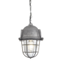 Hanging lights - Bulkhead Cage Pendant - 11 Inch - Gunmetal - INDUSTVILLE