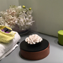 Storage box - Decorative box, jewellery box, empty pocket, wooden box - CHAN - ANOQ