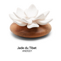 Fragrance for women & men - Oil diffuser JADE - ANOQ