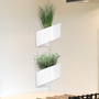 Other wall decoration - Modul'Green Gift, Wall Container  - GREEN'TURN