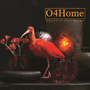 Art glass - carved - O4HOME