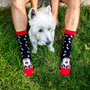 Chaussettes - Arty Chaussettes Dogs - PIRIN HILL